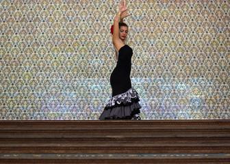 Wonderful flamenco girl