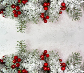 xmas winter background - fir snow red berries