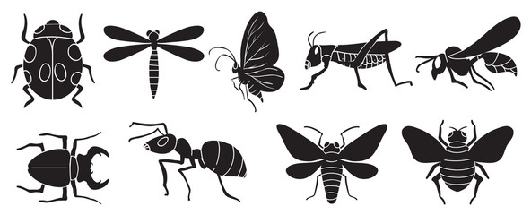 A group of insects