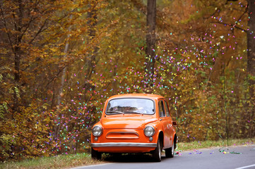 the ancient car in the autumn wedding day