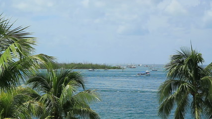 Key West Florida Scenic Ocean View boats and palm trees