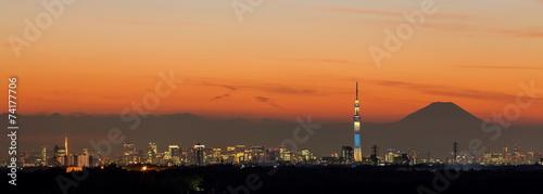 Tokyo city view,Tokyo sky tree , Tokyo Tower and Fuji mountain