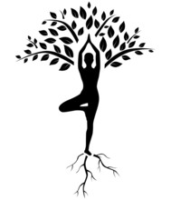 Yoga träd utgör silhuett