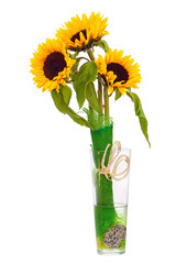 Still Life with Sunflowers in Glass Vase Isolated on White.
