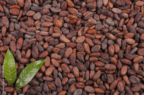 In de dag Aromatische cocoa beans background with leaf