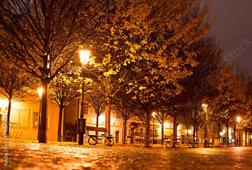 Foto op Aluminium Praag Prague park at night