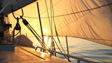 beautiful sun-filled sails at dawn