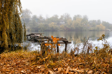Autumn coast in fog, with trees and wooden bridge