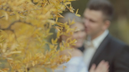Bride and groom near the tree with yellow leaves