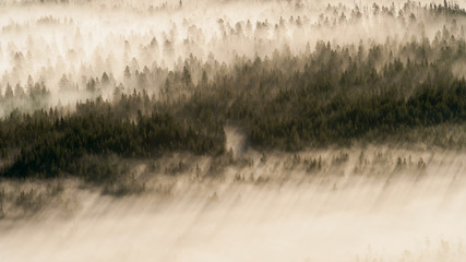 Morgennebel in Finnland