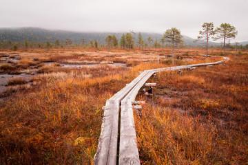 Steg durch ein Moor in Finnland