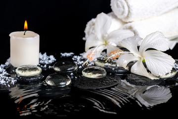 cryogenic spa still life of delicate white hibiscus, zen stones © Alisa