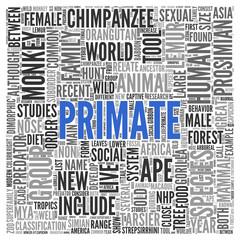 PRIMATE Concept Word Tag Cloud Design