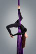 Beautiful dancer on aerial silk, aerial contortion, aerial ribbo - 74193998