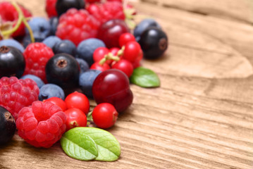 Different type of berry fruits