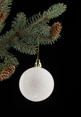 ball for Christmas with the branch of fir-tree