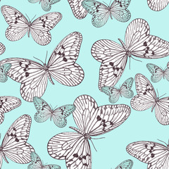 Blue pattern Butterflies