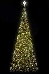 christmas tree in Ostrava