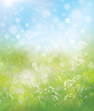 Fototapety Vector spring nature background.