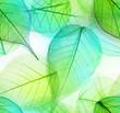 Leinwanddruck Bild - Macro leaves seamless texture