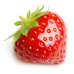 Red berry strawberry