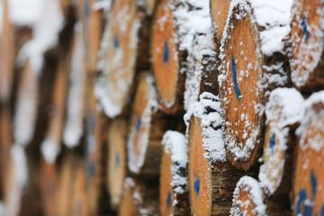 Holz Winter