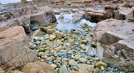 Rochers découverts à marée basse en Bretagne