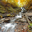 Autumn waterfall in forest