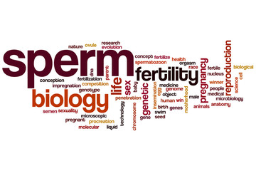 Sperm word cloud
