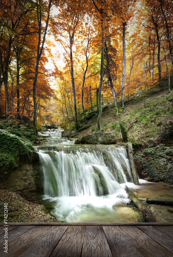 forest waterfall - 74212140