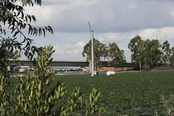 Windmill and Farm
