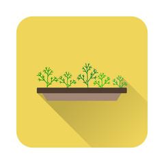 flat icon fennel in a pot