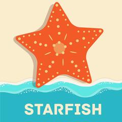 retro flat starfish icon concept. vector illustration design