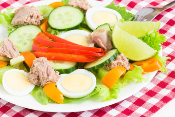 Salad with tuna end egg