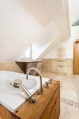 Vintage bathtub in modern bathroom