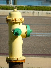 Yellow fire hydrant next