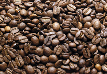 Background of coffe-beans