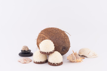 Coconut, Shells and Coconut Sweets