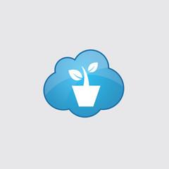Blue cloud houseplant icon.