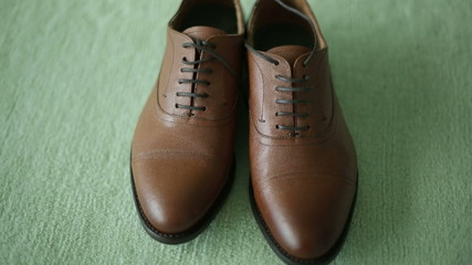 brown leather shoes on a green background