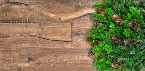 christmas tree branches on wooden background. twigs with cones