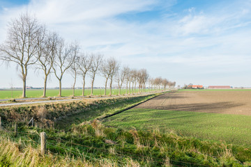 Picturesque polder landscape in autumn