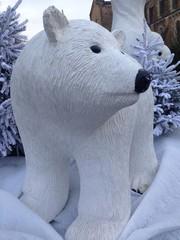 Ours polair, blanc, décoration de noel