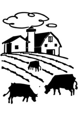 Cows Grazing On Farm