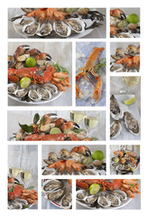 Sea food collage