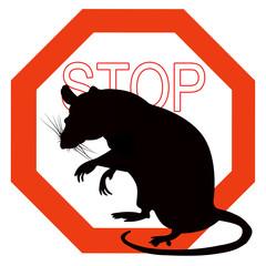 rat animal stop