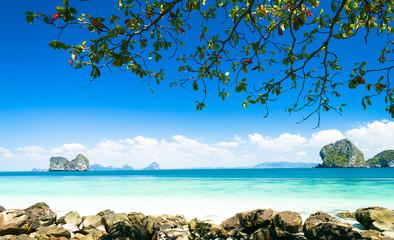 Romantic Island Jungle Lagoon