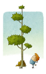 child looks at how a tree grows