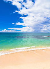 In a Sunny Paradise Vacation Wallpaper