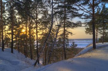 Зимний лес и бугры